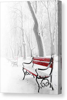 Park Scene Digital Art Canvas Prints