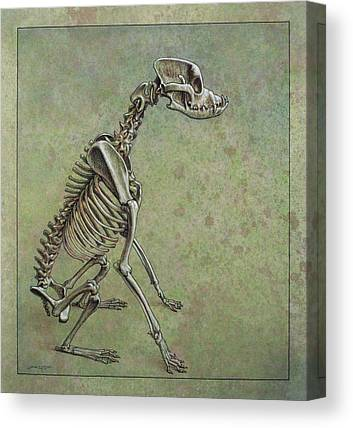 Skeleton Canvas Prints