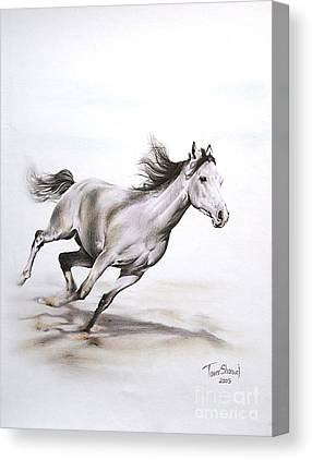 Running Horses Drawings Canvas Prints