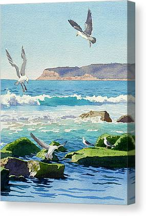 Seagulls Canvas Prints