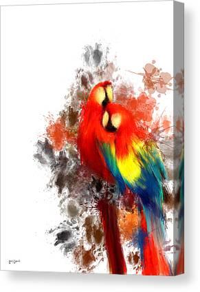 Scarlet Macaw Canvas Prints