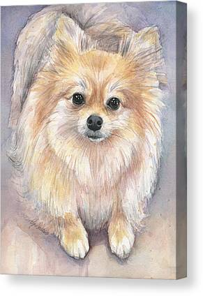 Pomeranian Canvas Prints