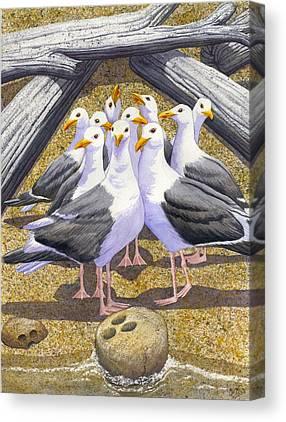 Driftwood Beach Canvas Prints