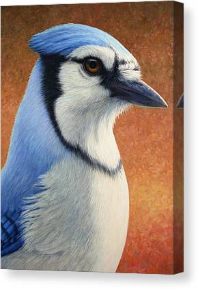 Bluejay Canvas Prints
