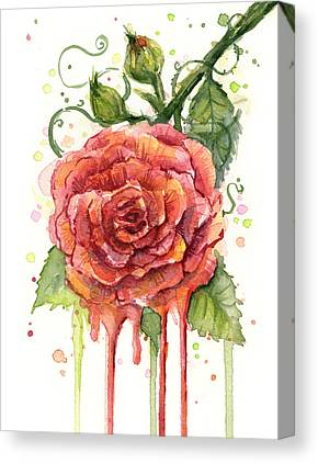Rose Drawings Canvas Prints