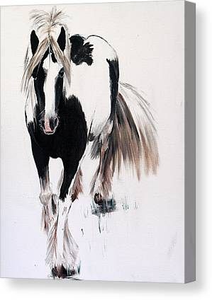 Forelock Canvas Prints