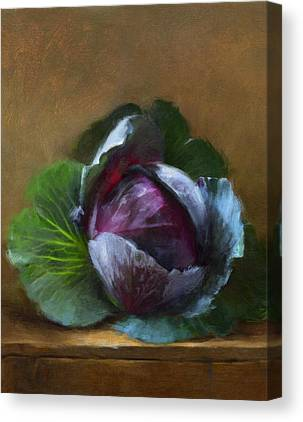 Cabbage Canvas Prints