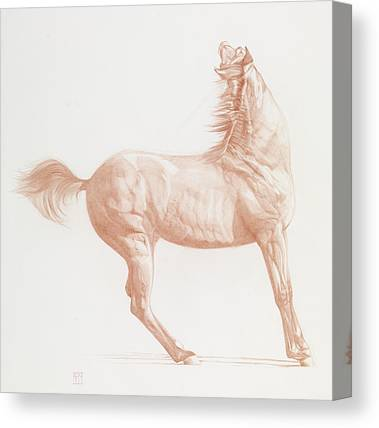 Horse Art Pastels Canvas Prints
