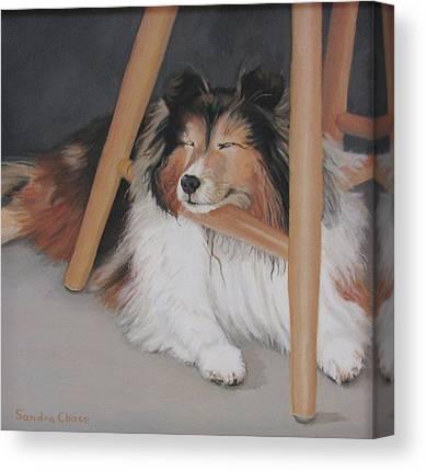 Dog Under Chair Canvas Prints