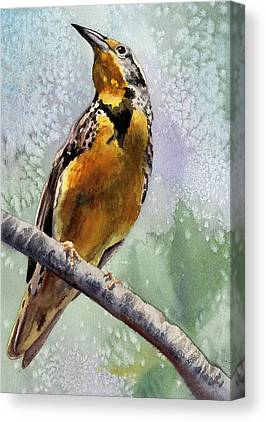 Meadowlark Canvas Prints