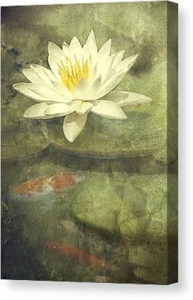 Blend Canvas Prints