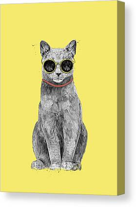 Cool Kittens Canvas Prints