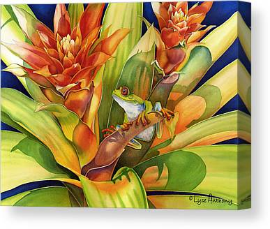 Bromeliad Canvas Prints