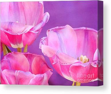 Pinks And Purple Petals Photographs Canvas Prints