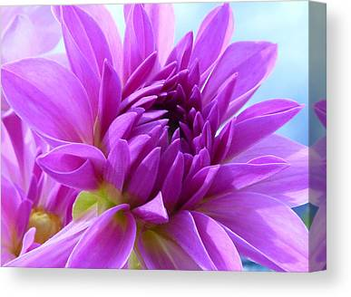 Dreamy Flower Canvas Prints