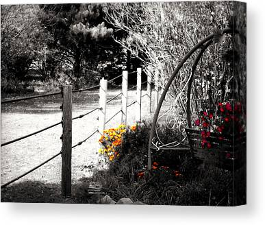 Country Chic Canvas Prints