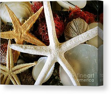 Still Life With Fish Photographs Canvas Prints