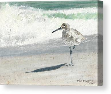 Sandpiper Canvas Prints