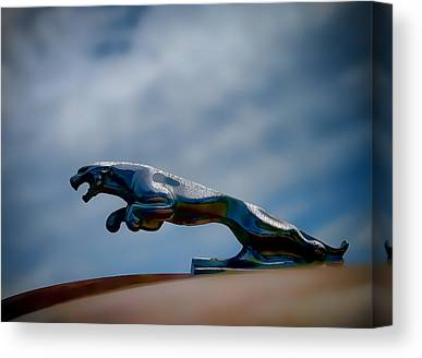 Vintage Hood Ornament Digital Art Canvas Prints