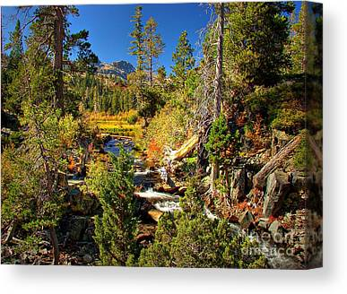 Fallen Leaf Lake Canvas Prints