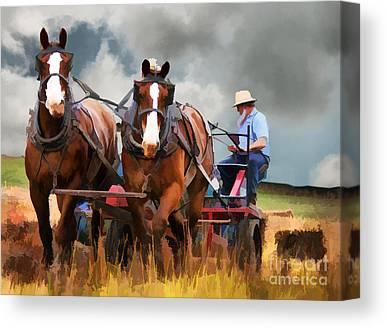 Bailing Hay Canvas Prints