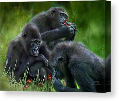 Ape Mixed Media Canvas Prints