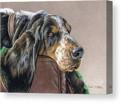 Sleeping Dog Drawings Canvas Prints