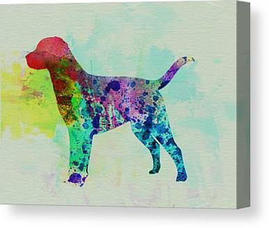 Labrador Retriever Art Canvas Prints