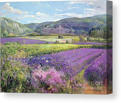 Field Of Flowers Canvas Prints