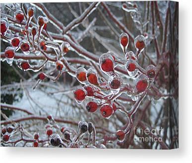 Connecticut Winter Canvas Prints