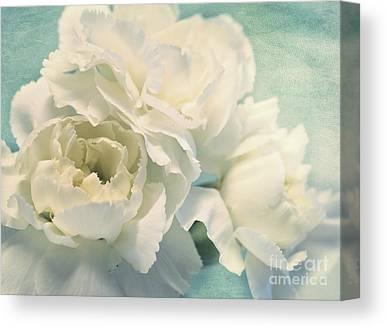 Carnations Canvas Prints