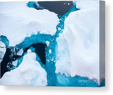 Warming Up Canvas Prints