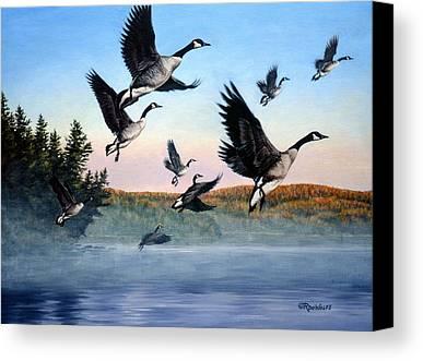 Goose Canvas Prints