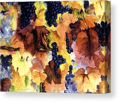 Vineyard In Napa Canvas Prints