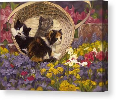 Calico Kitten Canvas Prints