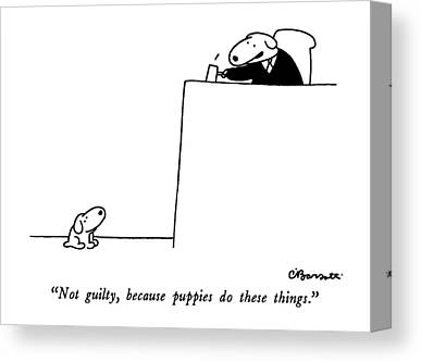 Puppies Drawings Canvas Prints