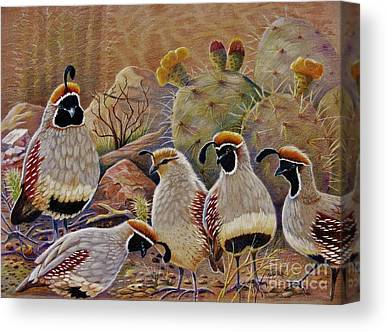 Quail Canvas Prints
