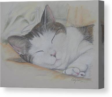 Clowder Canvas Prints