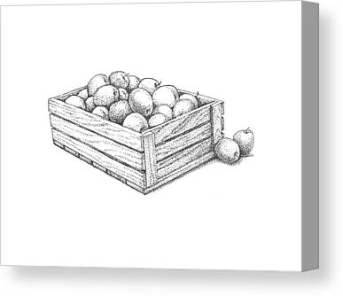 Apple Crates Drawings Canvas Prints