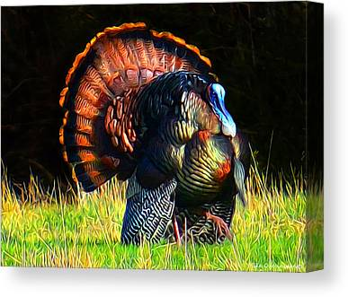 Eastern Wild Turkey Digital Art Canvas Prints