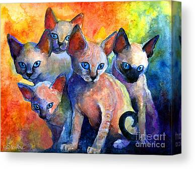 Kitten Canvas Prints