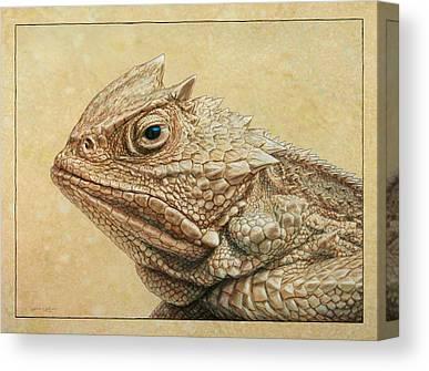 Wildlife Drawings Canvas Prints