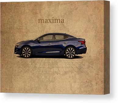 Maxima Canvas Prints