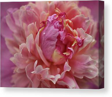 Indiana Flowers Canvas Prints