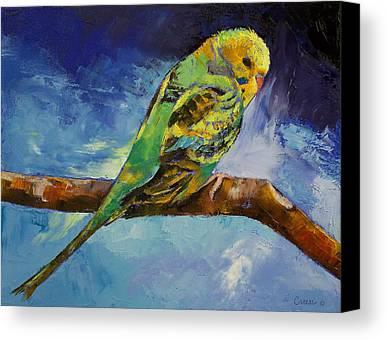 Parakeet Canvas Prints