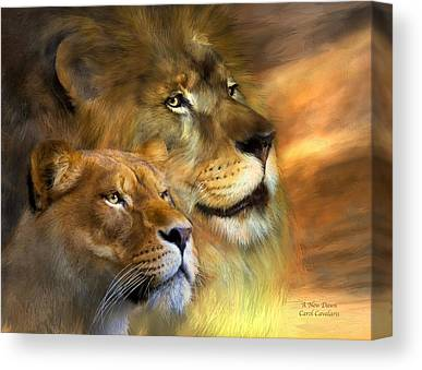 Lioness Mixed Media Canvas Prints