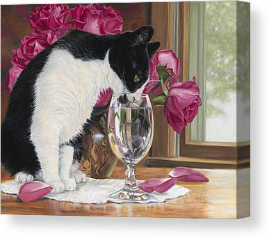 Domestic Cat Canvas Prints