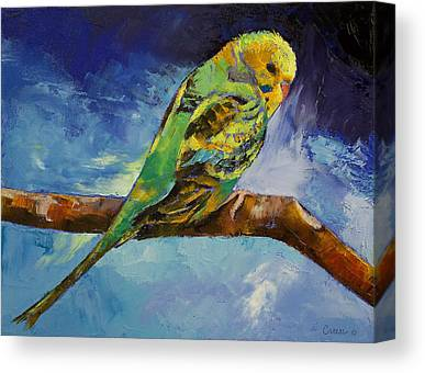 Parakeet Canvas Prints
