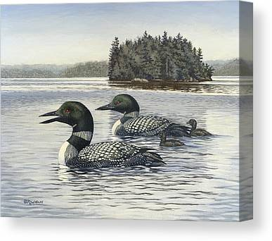 Loon Canvas Prints