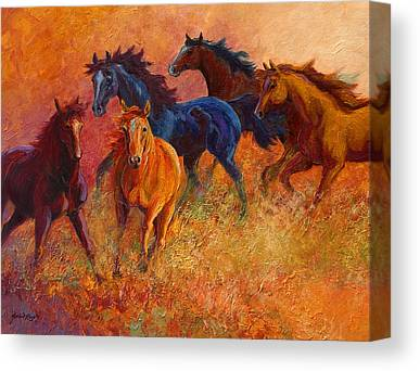 Foal Canvas Prints